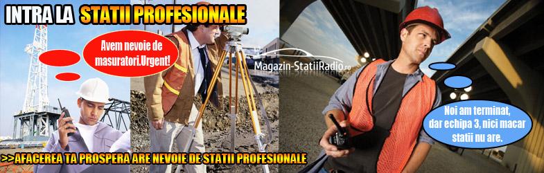 Statii Profesionale